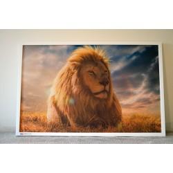 Topný obraz 520W - 970 x 630 mm