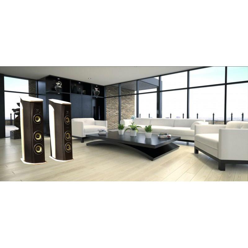 Dárkový poukaz na luxusní High-End reprosoustavy v hodnotě 60 000 Kč