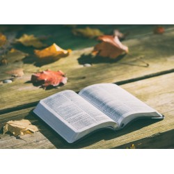 Kniha potěší