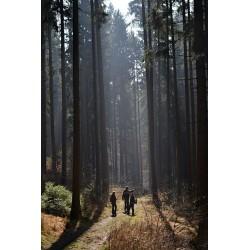 Dárkový poukaz venkovní zážitková hra emigrace z Československa v hodnotě 3000 Kč