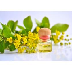Dárkový poukaz na ayurvédskou olejovou masáž v hodnotě 690 Kč