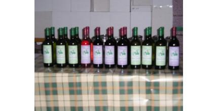 Krabice 6 lahví vín dle vlastního výběru