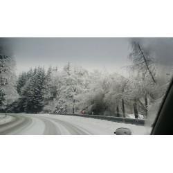 Dárkový poukaz na kurz jízdy na sněhu, jízda v zimním období v hodnotě od 1999 Kč