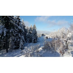 Dárkový poukaz na celodenní výpravu na sněžnicích Krkonoše v hodnotě 1499 Kč