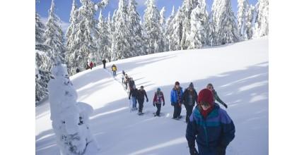 Sněžnicový kurz v náročném terénu