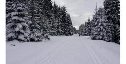 Kurz běžeckého lyžování v Jizerkách